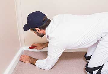 Cheap Water Damage Restoration | Carpet Cleaning Valencia
